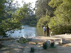 people-at-pine-lake
