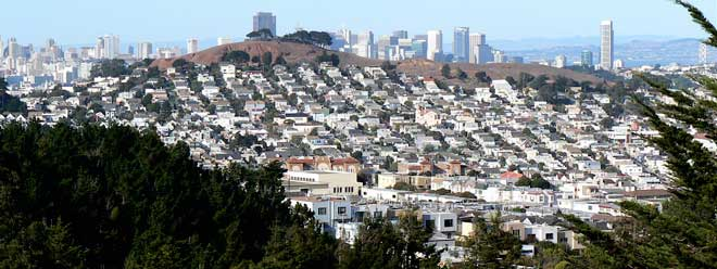 city ecosystem