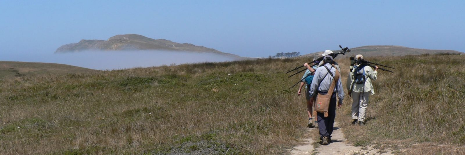Photo: Pt. Reyes Hikers