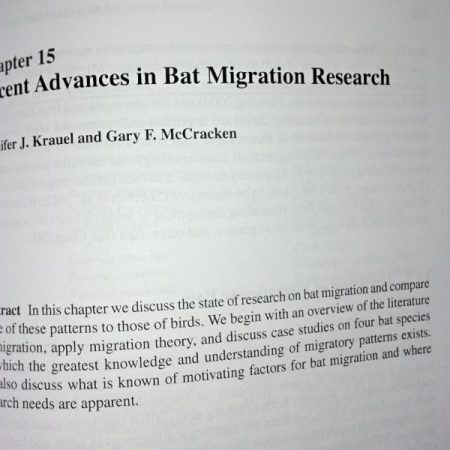 Photo: Recent advances in bat migration research book chapter