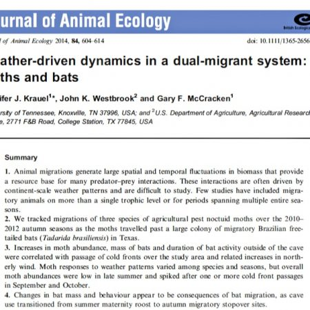 Screen shot: Weather-driven dynamics in a dual-migrant system: moths and bats