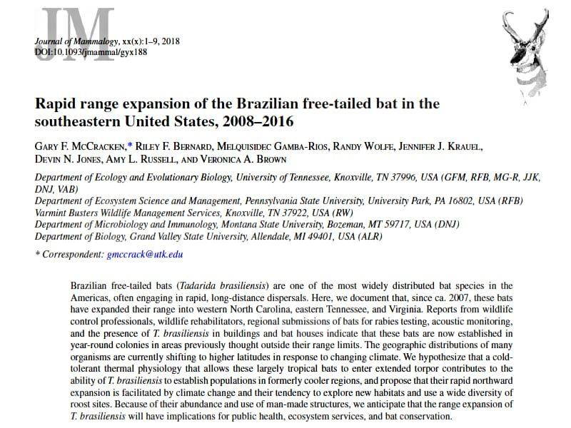 Screenshot: Rapid range expansion of the Brazilian free-tailed bat