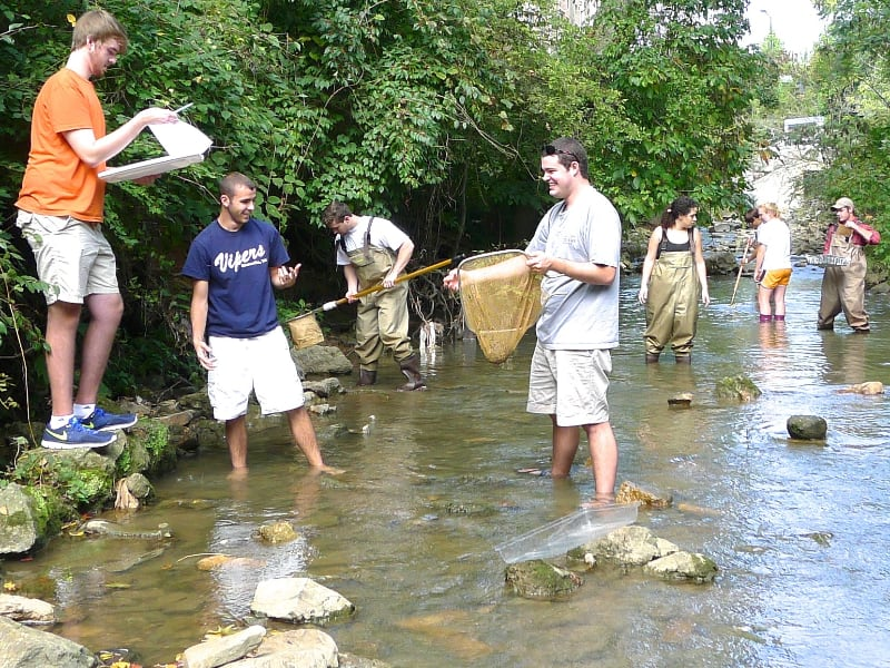Photo: Ecology students sampling animals in an urban stream