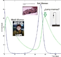 meme plot of moth/bat memes