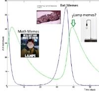 meme plot of moth/bat memes